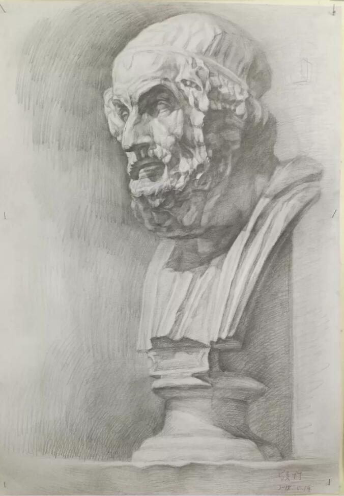 我校美术生素描石膏像作业展图片